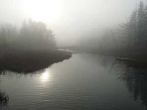 Foggy Morn REDUCED SIZE 72